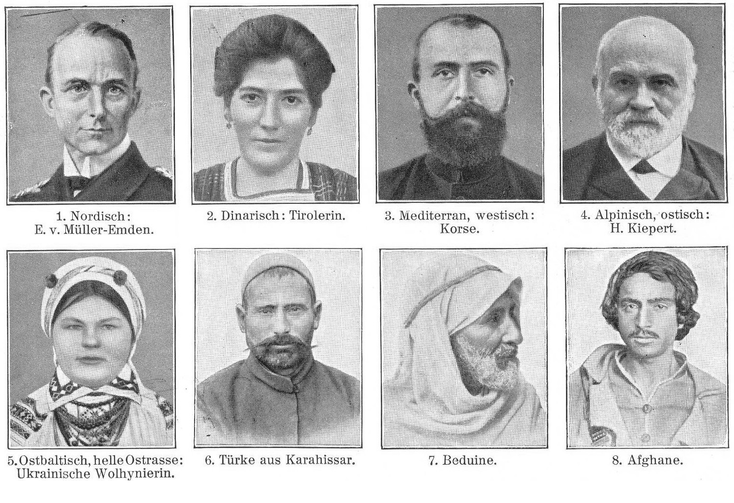 The Origin Of The Cauasian Race